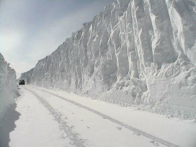 northern border wall.jpg